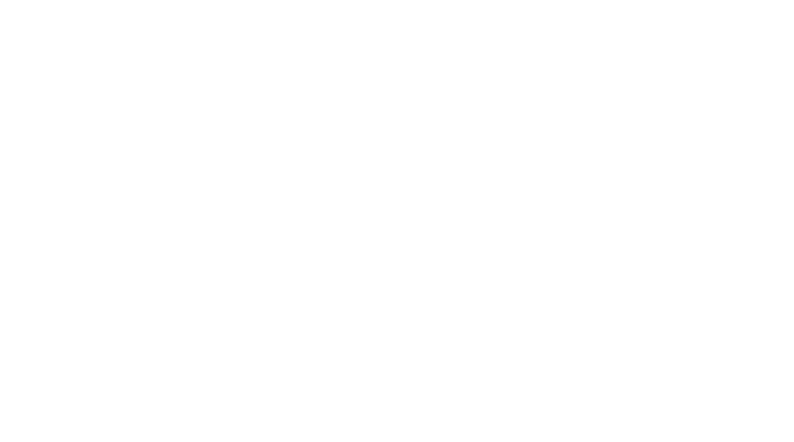 logo alion